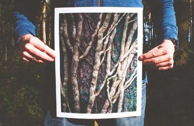 'Creactiva't al Museu!' proposa fotografiar sobre una fusta