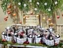El Mercat de la Masuca sorteja 42 paneres de Nadal