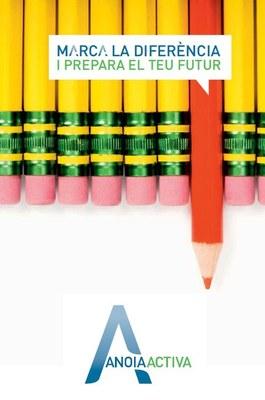 Evolució dels cursos 2014 d'Anoia Activa