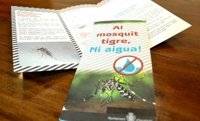L'Ajuntament d'Igualada recorda prendre mesures preventives per evitar la proliferació del mosquit tigre