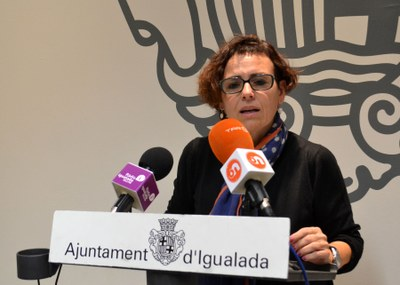 L'Ajuntament crearà el Consell Municipal d'Accessibilitat