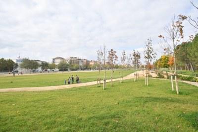 Projecte per fer un dipòsit de reg amb aigua freàtica al Parc Central