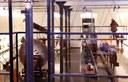 Visites guiades i gratuïtes al Museu de la Pell