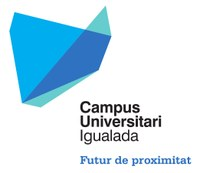 Logo Campus Universitari v06 FINAL.jpg