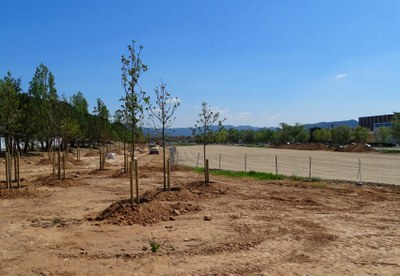 Avancen les obres del camp de vol de l'Avinguda Catalunya