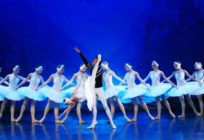 'El llac dels cignes', el 19 de gener al Teatre Municipal l'Ateneu