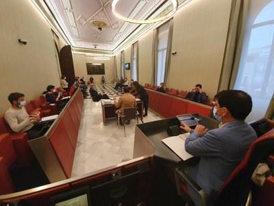 Els cinc grups municipals fan una declaració institucional conjunta en què expressen el compromís per sumar esforços davant la crisi sanitària i l'etapa de reconstrucció social i económica que cal afrontar