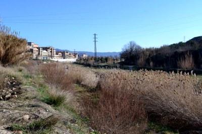 Nou Programa Municipal d'Adaptació al Canvi Climàtic