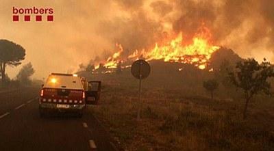Seguiment de l'incendi forestal d'Òdena (dilluns, 9h)