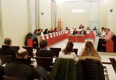 Sessió ordinària de ple, desembre de 2018