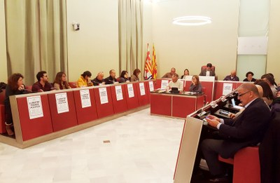 Sessió ordinària de ple, novembre de 2017